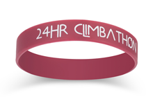 Imprinted Wristband